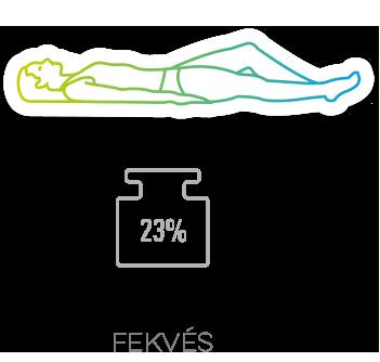 A porckorongokra nehezedő nyomás az álló testhelyzethez (100%) viszonyítva